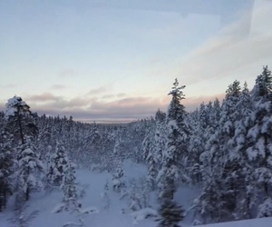 beautiful sky, finland, and paradise image