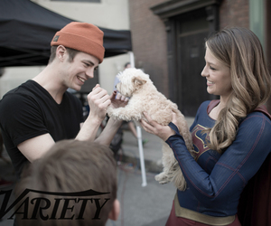 barry allen and grant gustin image