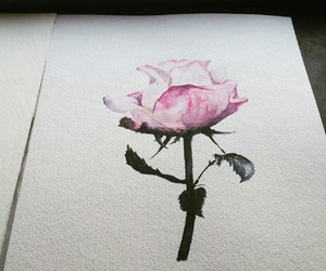 beautiful, drawing, and flower image