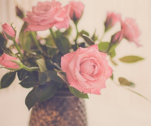 roses, flowers, and vintage image