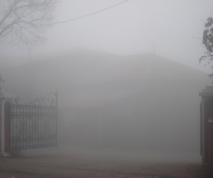 pale, aesthetic, and fog image