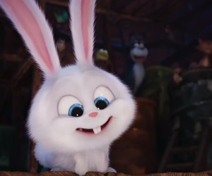 bunny, movie, and the secret life of pets image