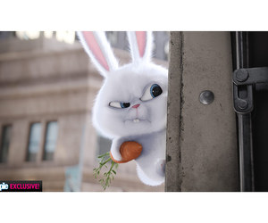 bunny, snowball, and movie image