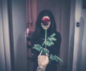 rose, love, and couple image