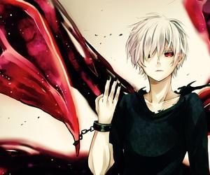 anime boy, kaneki ken, and toyko ghoul image