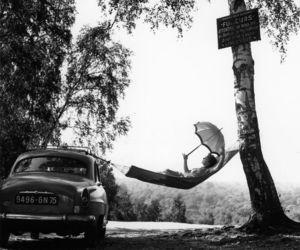 hammock, tree, and car image