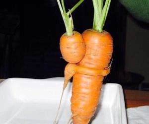 hug and carrot image
