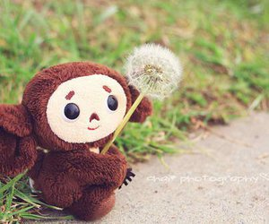 cute and monkey image