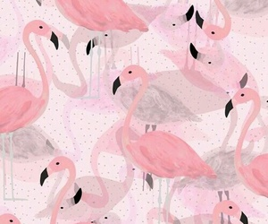 animal, pink, and animals image