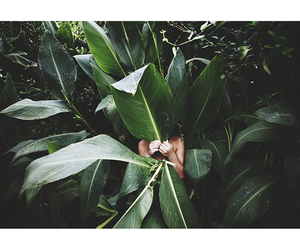 green, hiding, and mood image