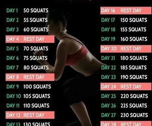 abs, workout, and squats image