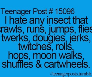 funny, insect, and teenager post image