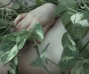 body, soft pale, and nature image