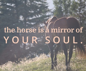 easel, horse, and quote image