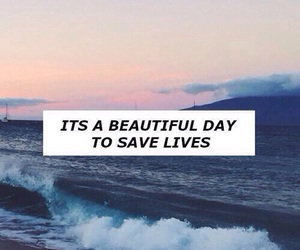 grey's anatomy, quotes, and ocean image
