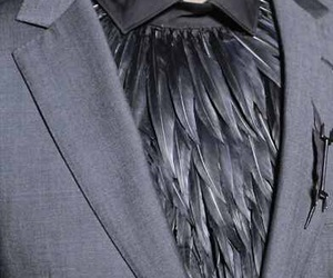 fashion, feather, and suit image