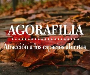 frases, español, and hojas image