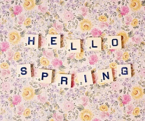 flowers, springbreak, and welcome spring image