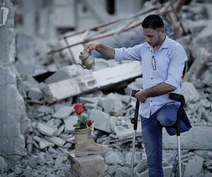life and palestine image