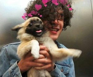 matty healy and the 1975 image
