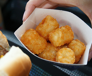 food, yum, and tater tots image