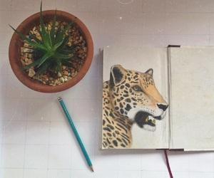 aesthetic, amazing, and animal image