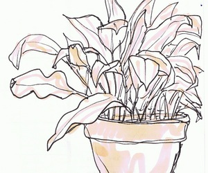 drawing, overlay, and plant image