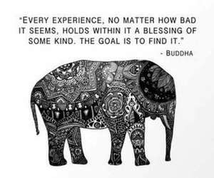 quotes, Buddha, and experience image