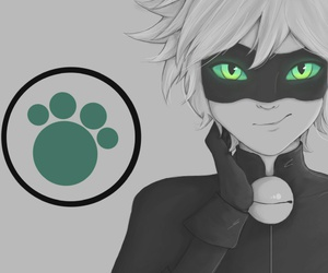 Chat Noir, miraculous, and Adrien image