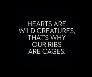 quotes, hearts, and cage image
