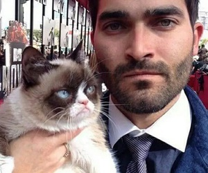 teen wolf, tyler hoechlin, and grumpy cat image