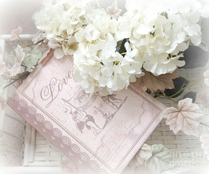 books and pretty image