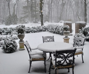garden and snow image