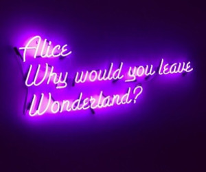 wonderland, alice, and purple image