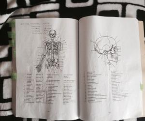estudio medicina image