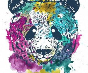 panda and hipster image