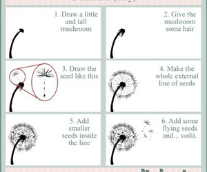 drawing, art, and dandelion image