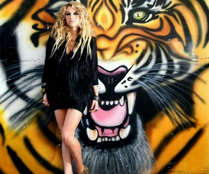 ke$ha, kesha, and tiger image