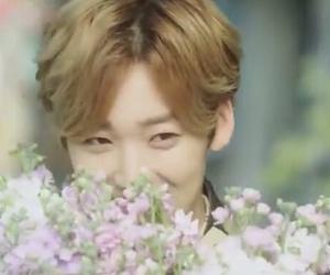 korean, kpop, and u-kiss image