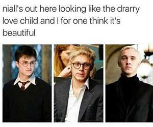 harry potter and niall horan image