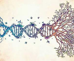 DNA, nature, and tree image