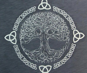 celtic, celtic tree of life, and symbol image