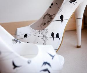 shoes, birds, and white image