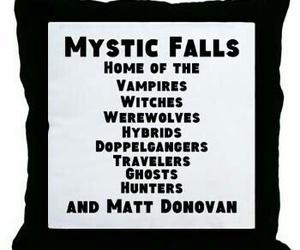 the vampire diaries and mystic falls image