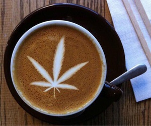 coffee, leaf, and weed image