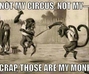 circus, funny, and wait image