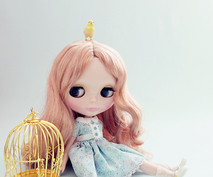 bird, blythe, and cage image