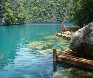 tropical, nature, and paradise image