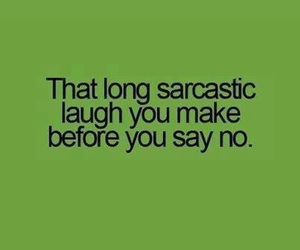 no, sarcastic, and funny image