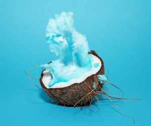 blue and coconut image